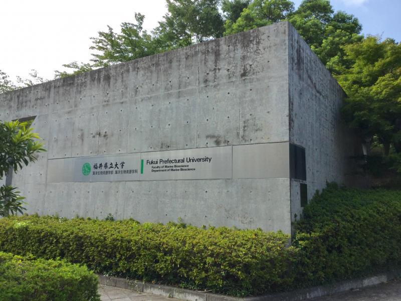 福井県立大学小浜キャンパス