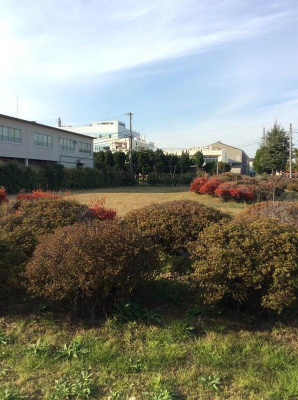 東邦チタニウム(株)